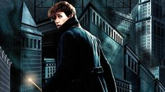 Fantastic Beasts 2016 Movie Newt Scamander Wallpaper
