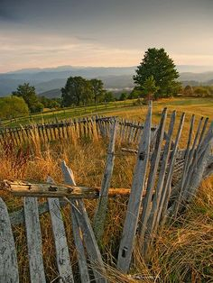 Country Living ~ fences and fields