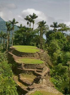"The Amazing ""Lost City"" (Ciudad Perdida) in the middle of the jungle of the Sierra Nevada. Santa Marta, Lost City, Sierra Nevada, Your Photos, Vineyard, Golf Courses, Photo And Video, Amazing, Places"