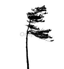 "Résultat de recherche d'images pour ""silhouette d'arbres"" Bobby Pins, Images, Hair Accessories, Beauty, Searching, Beleza, Hair Pins, Hair Accessory, Hairpin"