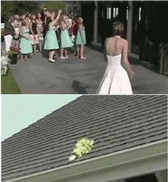 아무도 못 받는 부케, 어떻게 하나요?신부와 들러리가 모두 지붕만 쳐다보고 있습니다.알고보니 신부가 던진 부케가 지붕위에 올라가버린 상황이네요.야외결혼식장에서의 재미있는 해프닝같습니다.