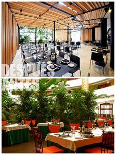 Nuestro Restaurante Jardín a la carta ofrece los mejores platos en un ambiente inigualable.