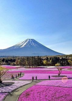 Mount Fuji, JAPAN. - aki - Google+