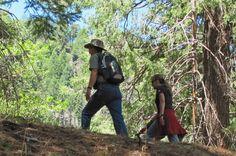 Cool hikes near Tucson