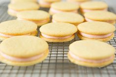Pink Grapefruit Sandwich Cookies Perfection. Worked with the white ...