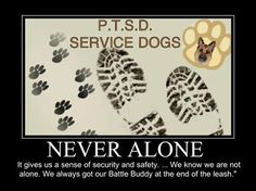 Thank God for PTSD Service Dogs...
