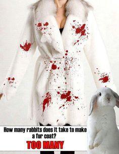 Anti- Fur