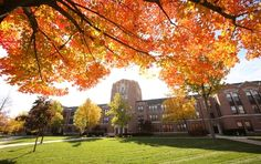 Michigan is home to a particularly diverse group of colleges and universities. Find your best value school in Michigan on our top-ranked list. Central Michigan University, Michigan Usa, Football University, College Football, State University, College Campus, College Fun, College Life, Places Ive Been