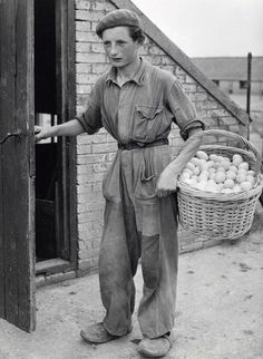 Duck farm. Boy carrying a basket full of eggs. The Netherlands, Harderwijk, 1951.