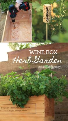 Wine Box Herb Garden DIY project - how to line the box and stain it so that it lasts the weather outdoors, soil mix, plants to choose, and even some wine cork plant markers! With a few structural modifications, a wood wine box herb garden can last the tes