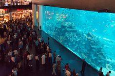 Dubai Mall - Dubai, United Arab Emirates. Photographer: Wanderlust by Jona