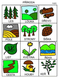 Pro Šíšu: Komunikační obrázky Nature Activities, Activities For Kids, Baby Time, Pictogram, Bowser, Language, Teaching, Books, Aurora