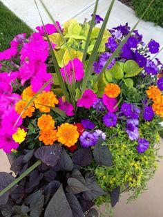 Ideas Patio Garden Planters Flower Pots For 2019 Container Flowers, Container Plants, Container Gardening, Vegetable Gardening, Succulent Containers, Garden Compost, Compost Tea, Outdoor Flowers, Outdoor Plants