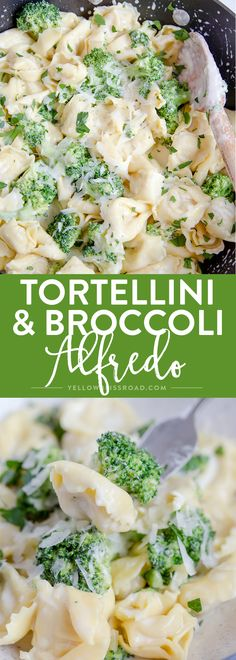 Tortellini & Broccoli Alfredo comes together in just 15 minutes - It's great option when you need to get dinner on the table in a hurry. Cheese Tortellini Recipes, Tortellini Alfredo, Broccoli Alfredo, Pasta Recipes, Dinner Recipes, Cooking Recipes, Tortellini Ideas, Tortellini Crockpot, Kitchen