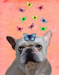 French Bulldog Butterflies 8X10 French bulldog print, frenchie poster frenchie poster dog print illustration, picture, painting, graphic
