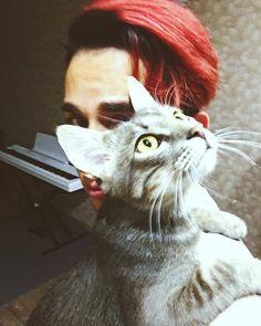 Afbeeldingsresultaat voor citrus cat melovin