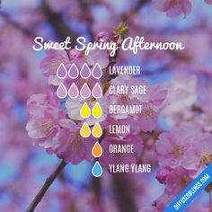 Sweet Spring Afternoon - Essential Oil Diffuser Blend