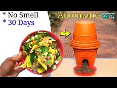How to Easily make Compost from kitchen waste : Hello guys today I am going to show you how to make compost from kitchen and garden waste . Fertilizer For Plants, Organic Fertilizer, Liquid Fertilizer, Compost Tea, Garden Compost, Vegetable Garden Tips, Vegetables Garden, How To Make Compost, Avocado Seed