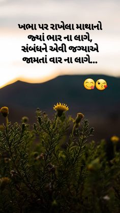 Sufi Quotes, All Quotes, Hindi Quotes, Qoutes, Soul Poetry, Gujarati Quotes, Good Thoughts Quotes, Cute Animal Videos, Deep