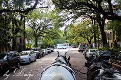 Carriage ride in Savannah, Georgia