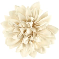 H&M Hair clip/brooch ($2.82) ❤ liked on Polyvore featuring accessories, hair accessories, flowers, fillers, hair, white, white hair clips, flower hair accessories, barrette hair clips and white hair accessories