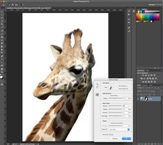 Photoshop tutorial: How to remove a background in Photoshop