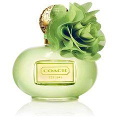 Coach Poppy Citrine Blossom Women's 3.4-ounce Eau de Parfum Spray ($50) ❤ liked on Polyvore featuring beauty products, fragrance, perfume, beauty, makeup, filler, orange, green tea perfume, edp perfume and flower fragrance