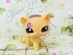 Littlest Pet Shop Yellow Kitty Catpurple Flowers 1962 | eBay