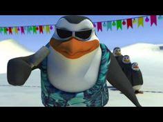 Schiffie & Co - Pinguin Tanz