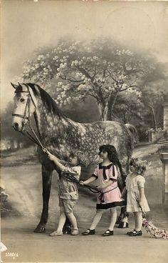 Children with big gray horse