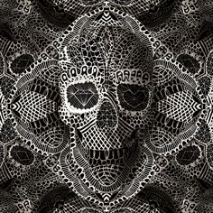 ali-gulec-lace-skull-large-art_021d1e1b-bdf3-41c7-b169-9af53546477a.jpeg (1500×1500)