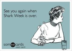 Funny Somewhat Topical Ecard: See you again when Shark Week is over. Shark Bait, Great White Shark, Marine Biology, I Love To Laugh, E Cards, Funny Posts, Laugh Out Loud, I Laughed, Haha