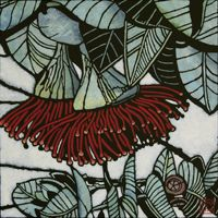 Eucalypt by Julie Hickson