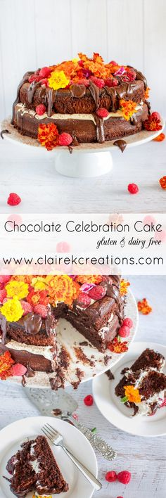 Gluten and dairy free chocolate celebration cake - an indulgent chocolate mudcake that is allergy-friendly and super decadent. Best Gluten Free Recipes, Gluten Free Desserts, Gluten Free Chocolate Cake, Chocolate Cakes, Cake Recipes, Dessert Recipes, Cake Works, Caking It Up, Cake Business