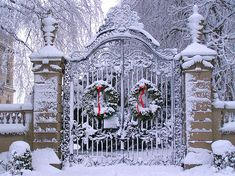 Great property entrance! Gorgeous ornate gate... the simple wreaths are perfect!