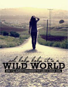 ☮ American Hippie Music Art Quotes ~ Ltrics, wild world. cat stevens.