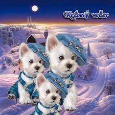 Good Night, Dogs, Photography, Animals, Fictional Characters, Art, Buen Dia, Nighty Night, Art Background