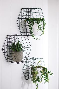 Plaats je favoriete planten in kubussen van staaldraad om ze uit te lichten en een industriële urban jungle look te geven.  Fresh  Light White Monochrome Crisp Natural Scandi  Scandinavian Dark Moody Charm Character Industrial Slick Living Lounge Bedroom Interior Style Design  House Home Inspo Inspirational Inspiration Palate Paint Luxe Furniture Dream Goals On trend  Trend Trending