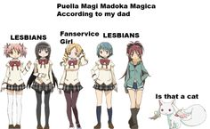 Puella Magi Madoka Magica simplified.