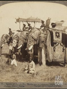 State Elephants of the Maharajah of Gwalior Superbly Decorated for the Delhi Durbar Photographic Print at Art.com