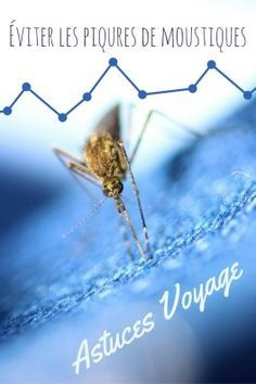 Tous nos conseils et astuces pour éviter les piqûres de moustique lors de vos voyages à travers le monde et surtout sous les tropiques !  Photos créative commons : Erwan Guerin