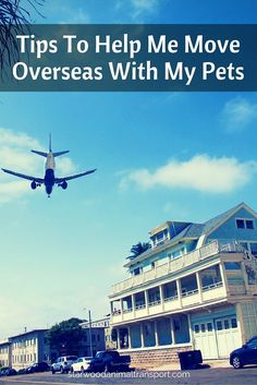 The requirements for moving pets internationally is tedious. Learn some of these great tips to help alleviate the stress of moving overseas. http://www.starwoodanimaltransport.com/blog/starwood-tips-to-help-me-move-overseas-with-my-pets @starwoodpetmove