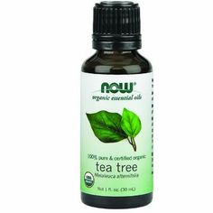 NOW Foods Organic Essential Oils Tea Tree  1 fl oz >>> To view further for this item, visit the image link.