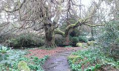 Park I found close to my house