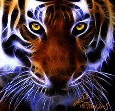 Fractal Tiger Eyes