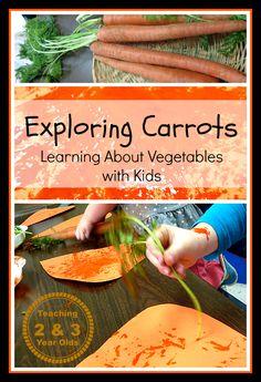 Kids Gardening Activities: Exploring Carrots