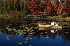 Beautiful fall colors in Cross Lake, Minnesota.  Photo by LifeSong Photography, MN.