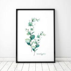 Eukaliptus 8 Design