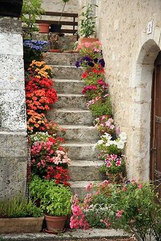 A pretty stairs full of flowers in L'Anglin, Vienne, France. Romantic isn't it ? More information: Red Bubble website !…