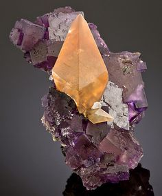 mineralists: Gemmy golden Calcite on top of purple cubed Fluorite. From Denton Mine, Illinois Minerals And Gemstones, Rocks And Minerals, Rock Collection, Beautiful Rocks, Mineral Stone, Rocks And Gems, Stones And Crystals, Gem Stones, Crystal Magic